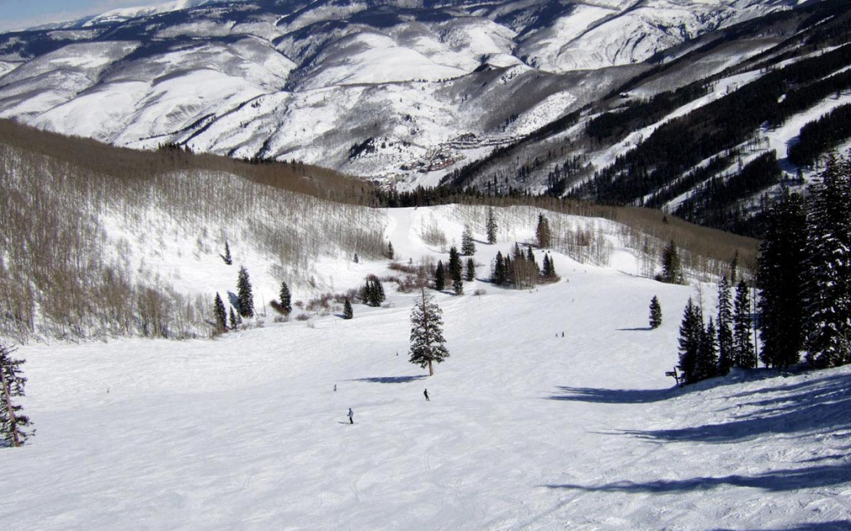 Beaver Creek-Colorado Larkspur Bowl