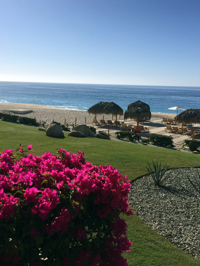 Room-view-cabo