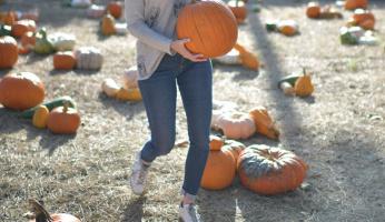 What Celebrities Wear to a Pumpkin Patch