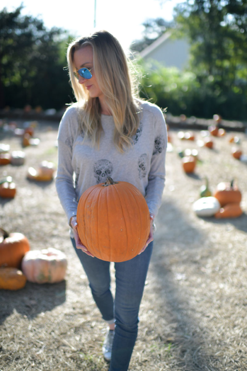 celebrity style pumpkin patch