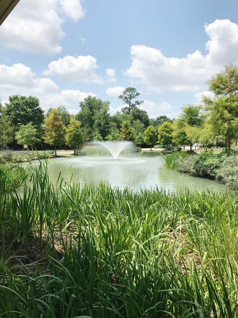 woodlands-resort-grounds